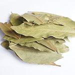 월계수잎15g